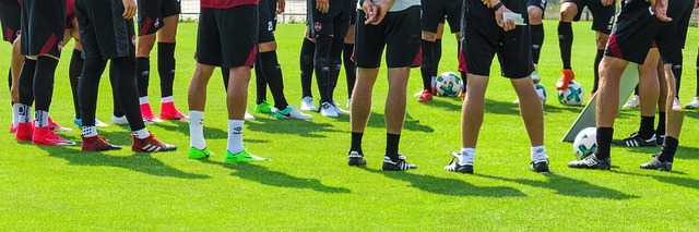 Raymond Verheijen Fußball Periodisation